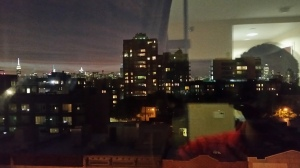 The view from my hotel in Brooklyn/True Detective Season 1 Opening Credits